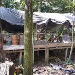 Colombia: Incautan 1,122 kilos de cocaína a aliados de las FARC