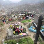VMT: Fumigarán cementerio 'Nueva Esperanza' por chikungunya