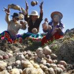 Minagri destaca envío de papa peruana a Marte