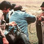 Informarán a futuros periodistas sobre matanza de Uchuraccay
