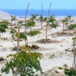 Senamhi: Continuaría deficiencia de lluvias en el sur