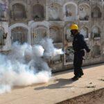 Dengue: Fumigan cementerios en Comas y Cercado de Lima