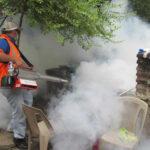 Panamá: Gobierno confirma 42 casos de zika y sugiere aplazar embarazos