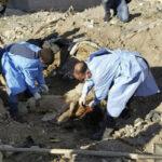 Irak: Descubren fosa común del Estado Islámico con 40 cadáveres