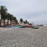 La Punta: 60 bañistas afectados por picadura de hidromedusas