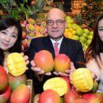 Mango: Exportación a Corea supera US$ 9.4 millones