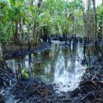 EsSalud envía médicos a zona afectada por derrame de petróleo