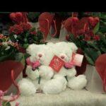 San Valentín: Paquistaníes no saben si podrán celebrar su día