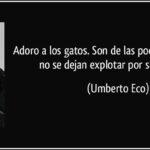 Las mejores frases de Umberto Eco en su fascinante cosmovisión