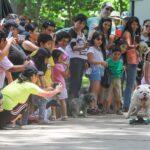 Jesús María: Municipalidad realizó 'Can Carnaval'