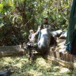 Perú: Policía destruye 3 pozas de maceración de hoja de coca