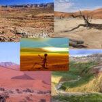 Ecuador: Científicos analizarán relación entre ecología y epidemias