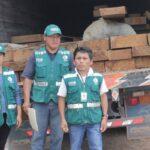 Pasco: Dos vehículos pretendieron trasladar madera ilegal