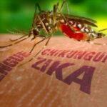Zika: Cuba registra 29 contagiados durante este 2016