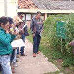 Junín: Universitarios mejoran conocimientos de cultivos andinos