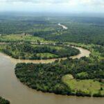 Perú se une a celebraciones del Día de la Vida Silvestre