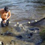 Produce fortalece la lucha contra la pesca ilegal