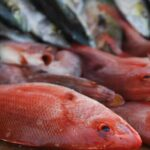 Semana Santa: Recomiendan consumo profuso del pescado