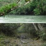 México: Un río desaparece completamente de la noche a la mañana