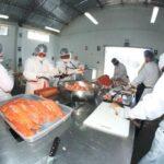 Trucha peruana ingresa con mayor fuerza a Estados Unidos