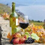 Cambio climático modifica las etapas de elaboración del vino