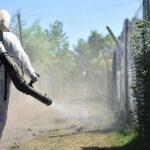 OMS edita guía contra resistencia a insecticidas de mosquito del zika