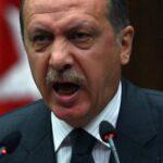 """Erdogan se escuda en """"libertad de expresión"""" para insultar"""