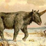 Científicos hallan restos de unicornio que habría vivido entre los humanos (Vídeo)