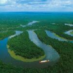 Descubren un gran arrecife de coral en la boca del río Amazonas