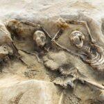 Atenas: Descubren importante fosa común del siglo VII a.C.