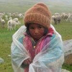Puno: Temperatura mínima descenderá a -14 grados en poblado de Mazocruz
