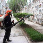 Chimbote: Fumigan cementerio para prevenir dengue