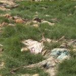 Nigeria: Hallan fosa común con 350 cadáveres y culpan al ejército