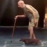 Paciencia y fidelidad: conozca al perro más paciente del mundo (VIDEO)