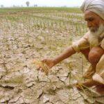 India: Gobierno estima en 330 millones los afectados por sequía