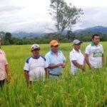Tocache: Capacitan a productores en lucha contra plagas