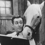 """Alan Young del recordado programa """"Mr. Ed"""" fallece a los 96 años"""