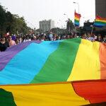 CIDH: Ser lesbiana, gay, bisexual y/o trans no es una enfermedad