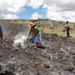 Gobierno decreta el estado de emergencia en Apurímac por sequía