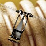 Crean pequeño robot inspirado en abejas y que posa en cualquier lugar