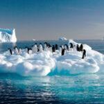 Cambio climático: Mar subirátres metros por deshielo de glaciar Totten