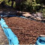 Ucayali: Policía destruye dos laboratorios de elaboración de cocaína