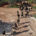 EEUU: Estado Islámico perdió 45% de territorio en Siria y 20% en Siria