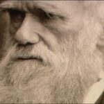 EEUU: Devuelven carta de Darwin robada por becario hace décadas
