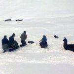 Arequipa declara en alerta naranja a 13 distritos por intensa nevada