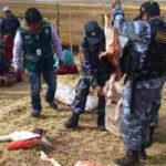 Adolescentes matan 12 parihuanas en la Reserva Nacional del Titicaca [VÍDEO]