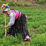 Sierra Exportadora destacó compromiso con agricultores