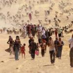 Irak: Acusan al Estado Islámico de genocidio sobre minoría yezadi
