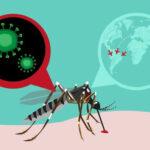 EEUU: Dan luz verde a la primera prueba de vacuna del zika en humanos