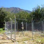 SENASA fortalece control de mosca de la fruta en Apurímac